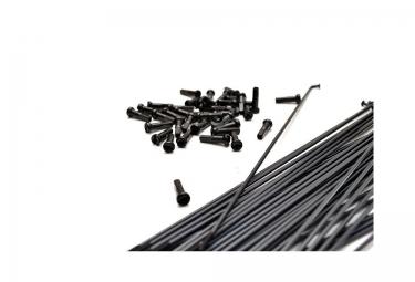pack de 40 rayons bsd straight gauge noir