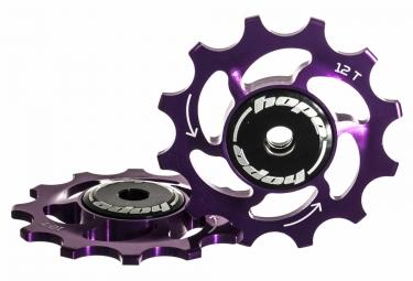 paire de galets hope 12v violet