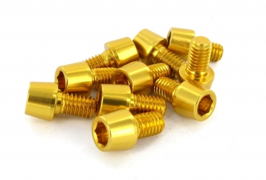 MSC Kit 10 Vis Alu M6 x 10 mm 7075T6 Or