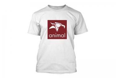 ANIMAL T-Shirt LOGO Blanc